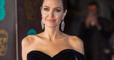 Angelina Jolie's Son May Not Have Been An Orphan When He Was Adopted